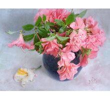 Azaleas in a Blue Vase Photographic Print