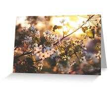 Gold flowers Greeting Card
