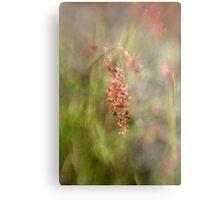 Dewy Grasses Metal Print