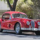 Jaguar XK120 by Robert Jenner
