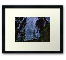 Polaris Star Trails Over Big Forest in King's Canyon Framed Print