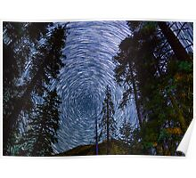 Polaris Star Trails Over Big Forest in King's Canyon Poster