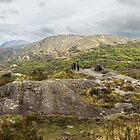 MacGillycuddy's Reeks, County Kerry, Ireland by Pauline Tims