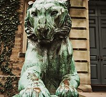 Princeton Tiger 3 by Kadwell