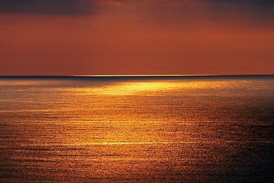 Morning Glow by Terri~Lynn Bealle