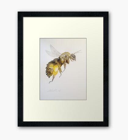 Honey Bee by Liz H Lovell Framed Print