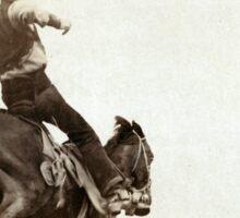 Bucking Bronco - John Grabill - 1888 Sticker