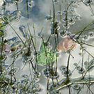 Pond's Edge Abstract by clizzio