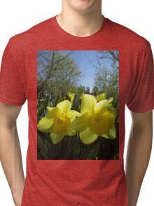 Tis Spring Tri-blend T-Shirt