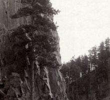 Castle Rock - John Grabill - 1888 Sticker
