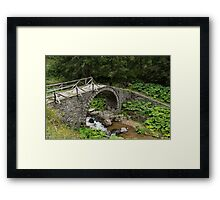 Deteriorating Slowly - The Elegant Arch of an Ancient Stone Bridge Framed Print