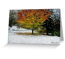 Beech Tree~ Caught in a Snow Flurry Greeting Card