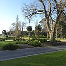 Lovely Parklands in front of Geelongs Modern Library. Vic. Australia. by Rita Blom
