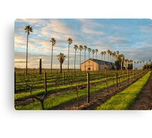 Chateau Dorrien Canvas Print