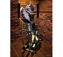 """""""MOM BRING ME SOME WATER THIS WORKOUT IS KILLING ME"""" CAT-FELINE EXERCISE PICTURE/CARD Photographic Print"""