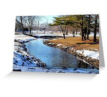 Tranquility in V S Greeting Card