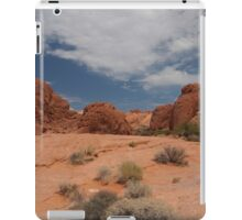 Valley of Fire State Park Desert iPad Case/Skin