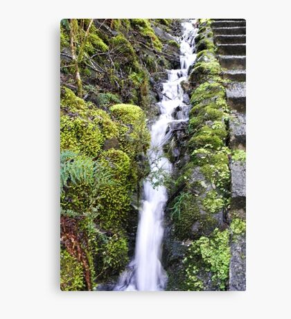100 Steps  Canvas Print