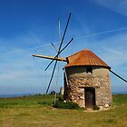 The old windmill  by julie08