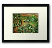 the gift of flight Framed Print