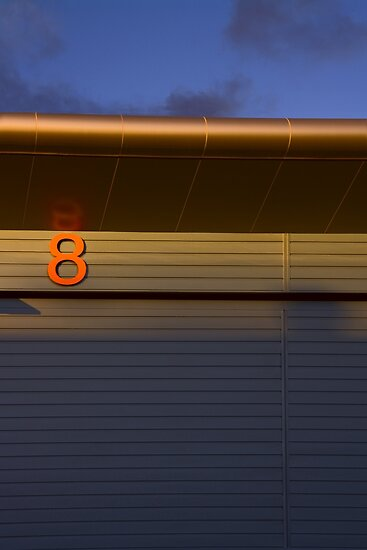 Lab number 8 by scottimages
