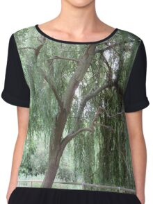 Weeping Willow  Chiffon Top