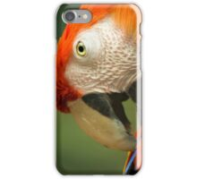 Red Parrot, the Scarlet Macaw – portrait iPhone Case/Skin
