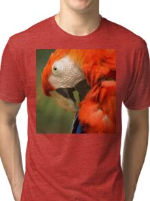 Red Parrot, the Scarlet Macaw – portrait Tri-blend T-Shirt