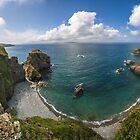 Cliff View, Sark Island by Bradley Shawn  Rabon