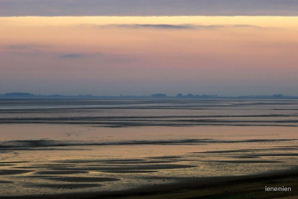 Sunrise and Low Tide by ienemien