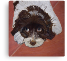 I See You - Cocker Spaniel Canvas Print