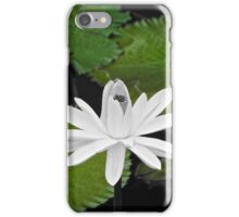 Lily Pad 2  iPhone Case/Skin