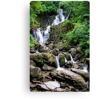 Torc Waterfall in Summer Canvas Print