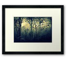 Stillness Speaks Framed Print