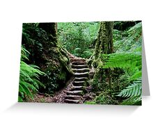 Rainforest Steps Greeting Card