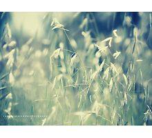 PANTONE BLUE Photographic Print