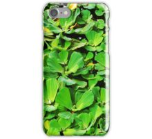 lily pad leapfrog iPhone Case/Skin