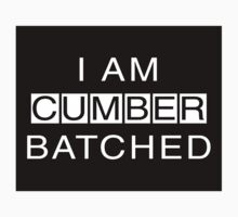 I Am Cumberbatched by jerasky