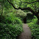 The secret garden by miradorpictures