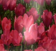 easter egg tulips Sticker