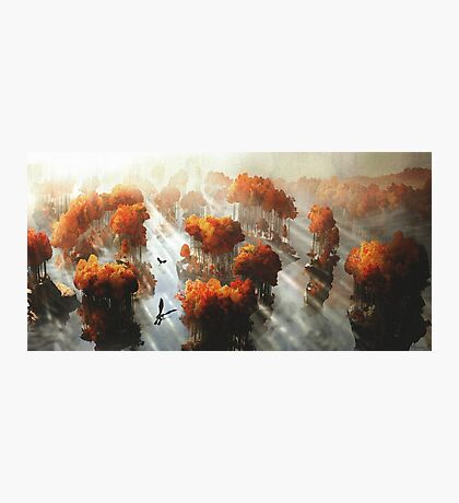Flying in Autumn Photographic Print