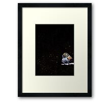 night bird  Framed Print