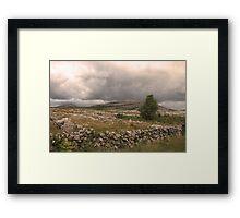 The wild Burren National Park Framed Print