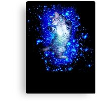 Psychedelic Galaxy Cat in space Canvas Print