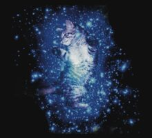 Psychedelic Galaxy Cat in space by datthomas