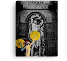 Cover Up Canvas Print