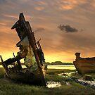 Boat Wrecks by Irene  Burdell