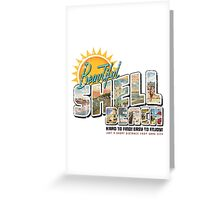 Beautiful Shell Beach Greeting Card