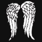 The Archer's Wings by jerasky