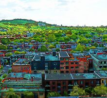 Montreal Suburb by michel bazinet